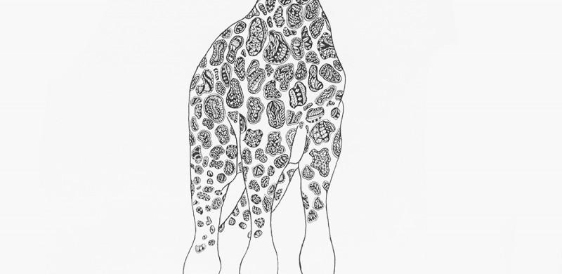 BenGirafe
