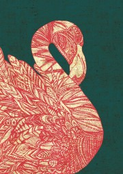 FlamingoColourEV-Web