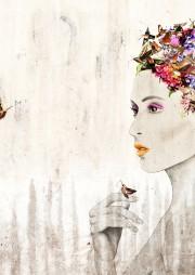 Hummingbird-HawkWeb