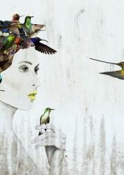 HummingbirdWeb