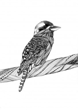 Kookaburra Limited Edition Print