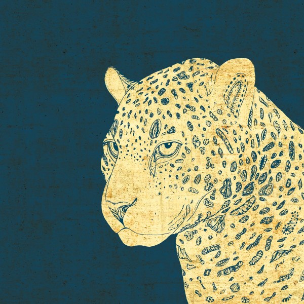 LeopardFinalWeb