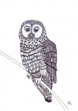 Owl Limited Edition Print